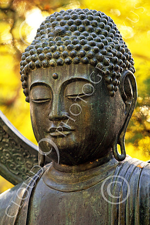 STY - BUDDHA 00027 A tight vertical crop study of the face of a Buddha statue in front of a background of golden leaves, by Peter J Mancus