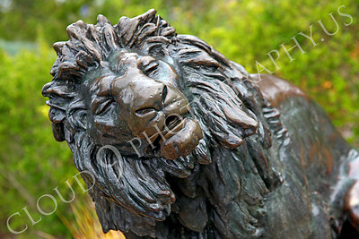 Sty - Animal 00001 Head of a male lion statue, by Peter J Mancus