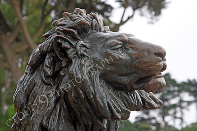 Sty - Animal 00002 Head of a male lion statue, by Peter J Mancus