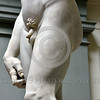 """STY-David 040 Anatomical details of Michelangelo's Biblical hero """"David"""", slayer of Goliath the giant, statue picture by Peter J  Mancus"""