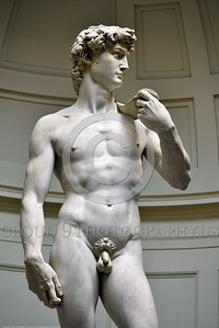 "STY-David 019 Michelangelo created his masterful 14 foot tall ""David"" between 1501 to 1504, statue picture by Peter J  Mancus"