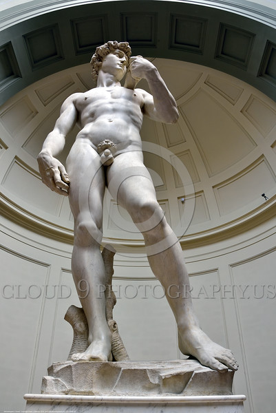 """STY-David 015 A vertical wide-angle perspective that elongated Michelangelo's masterful 14 feet tall of statue of Biblical hero """"David"""", slayer of Goliath the giant, statue picture by Peter J  Mancus"""