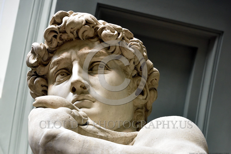 "STY-David 038 Michelangelo's ""David"" is arguably the best and most exquisite Renaissance sculpture from the 1500's, statue picture by Peter J  Mancus"