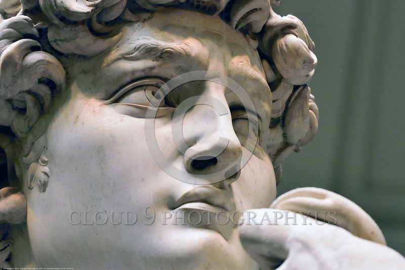 "STY-David 032 Michelangelo's ""David's"" lower right eye lid is chipped, detail close up statue picture by Peter J  Mancus"