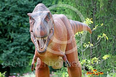 STY - AN 00022 Frontal view of an open jaw replica Tyrannosaurus rex dinosaur, by Peter J Mancus