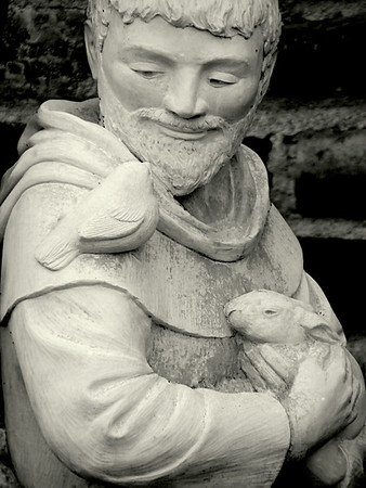 St Francis with Bird and Rabbit in Black and White