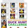 Second Place: Duck Hunt Challenge