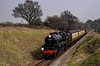 Black Five 45379 at Bluebell Crossing with the 10:55 Alton - Alresford, on 26th March 2011.