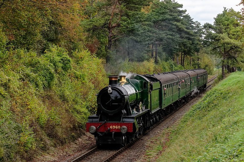 6960 passes through the Pine Trees, with the 09:45 Alton - Alresford, on 25th October 2014.