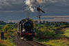 4270 passes Ropley Up Outer Home signal, with the 15:55 Alresford - Alton, <br /> on 25th October 2014.