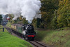 Black Five No. 45379 at Milepost 56 with the 11:50 Alresford - Alton, on 21st October 2016.