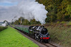 Standard 4 No. 76017 climbs away from Ropley with the 11:16 Alresford - Alton, <br /> on 21st October 2016.