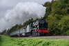 """LMS No. 46100 """"Royal Scot"""" exits the pine trees with the 10:05 Alresford - Alton, <br /> on 21st October 2016."""