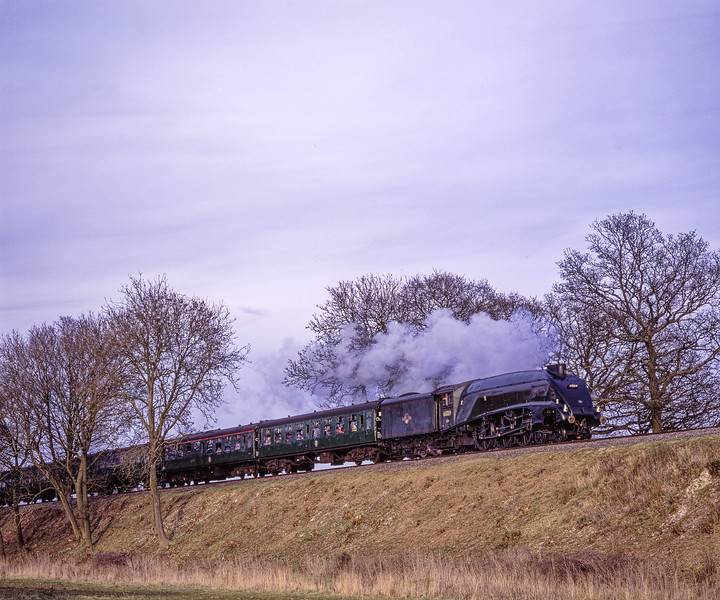 """A4 No. 60019 """"Bittern"""" at Rookwood Lane, with the 16:01 Alton - Alresford, <br /> on 15th March 2009.  Scanned Transparency."""