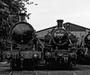 Super D No. 49395 and Ivatt No. 41312 in Ropley Yard, on 13th September 2009. <br /> Scanned Transparency.