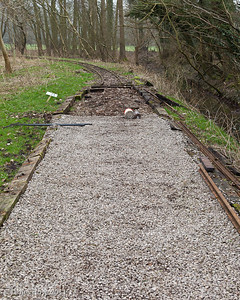 On the Nursery Line, the track has been lifted, the track bed dug out and a layer of ballast laid to allow plenty of drainage for the new track