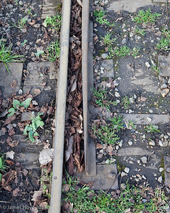 If not cleaned, the accumulation of leaves and dirt will cause problems with the points