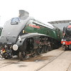 """60009 A4 Union of South Africa <br /> <br /> info on A4 Union of South Africa below <br /> <br /> <a href=""""https://en.wikipedia.org/wiki/LNER_Class_A4_4488_Union_of_South_Africa"""">https://en.wikipedia.org/wiki/LNER_Class_A4_4488_Union_of_South_Africa</a><br /> <br /> Flying Scotsman"""