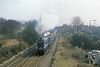16th Mar 86:  4498 Sir Nigel Gresley storms through West Wycombe on the Shakespear Express from Marylebone to Sratford on Avon