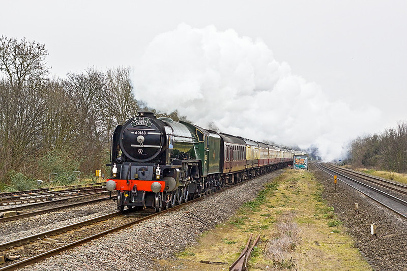 10th Mar 12:  60163 'Tornado' is heading 'The Cathedrals Express' from Paddington single handed after the accident to 71000 'Duke of Gloucester'.  A diesel will now be provided to help over the South Devon banks.  1Z29 is captured at Maidenhead