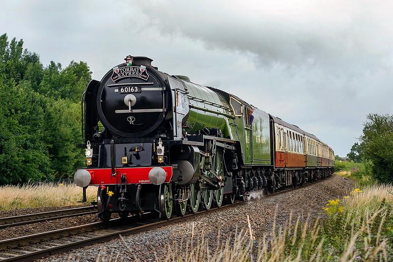 12th Jul 2015:   LNER Pacific  60163 'Tornado' on it's first run in this part of the world since a full overhaul and repaint passes behind the White Horse Business Park in North Bradley.  The Torbay Express is running from Bristol Temple Meads to Kingswear.