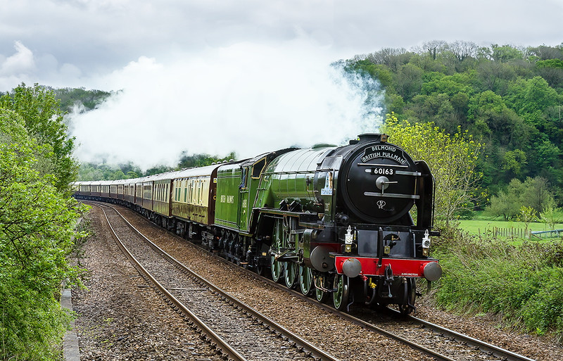 11th May 2016:  On not the kindest of days A1 Pacific 60163 'Tornaado' and the Belmond British Pullman rund through Freshford in the Avon Valley.  1Z91 started from Victoria and is going to Bristol Temople Meads though I suspect that most Passengers will alight at Bath