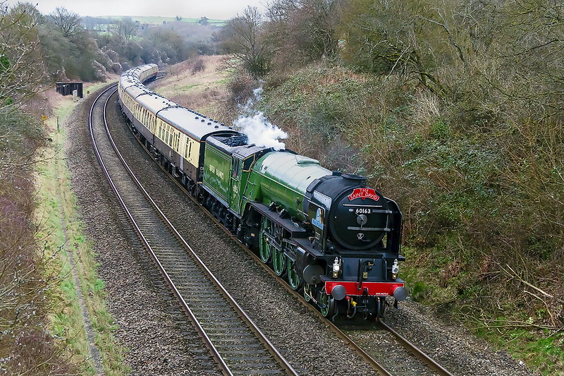 1st Mar 2017:  LNER A1 Pacific  60163 'Tornado' heading 'The Saint David' from Paddington to Cardiff  scoots down the grade through Shockerwick just to the West of Box.  iso 1600 of course