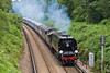 18th Jul 07:  34067 Tangmere going well through the leafy suburbs with today's running of the Cathedrals Express from Victoria to Minehead.
