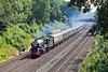 """26th Jun 10:  The opening leg of Steam Dreams multi-part """"Cornish Riviera Express"""" tour from Paddington to Penzance powered by 6024 """"King Edward I"""" is pictured from the Butts Hill Road bridge over the Sonning Cutting"""