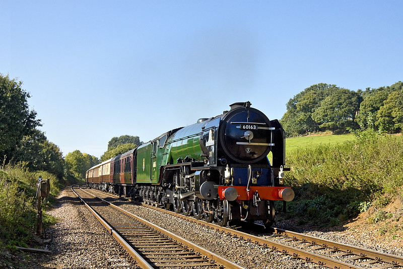 30th Sep 11:  Standing in for Clan Line on the VSOE Surrey Hills Luncheon Special is 60163 Tornado.  Captured here from the foot crossing in Albury