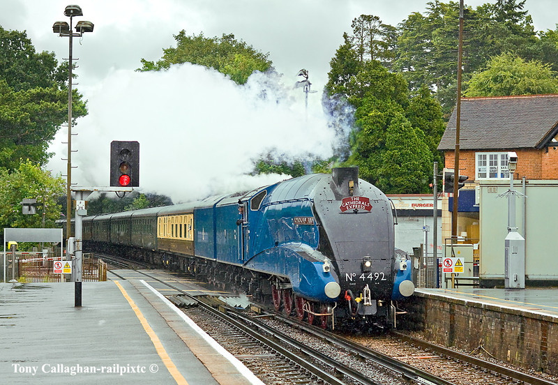 7th Jul 11:  LNER A4 Pacific 60019 Bittern masquerading as 4492 Dominion of New Zealand brings the day's Cathedrals Express to Cardiff through a very wet Sunningdale