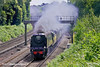 5th Jul 11:  The Dorset Coast Express powered by 34067 'Tangmere' rounds the curve through Pirbright on it's way to Weymouth from Victoria
