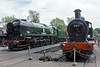 17th June 09: 34059 & GWR Duke dog 9017