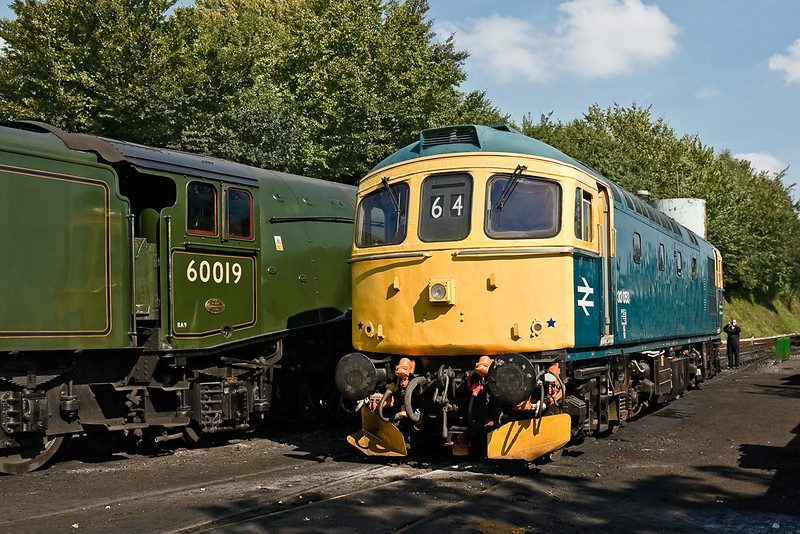 21st Sep 08: 60019 & 33053 at rest