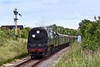 22nd Jun 08:  Passing Arlesford's distant signal 34007 'Wadebridge' drifts down the 1 in 80 at Bishops Sutton