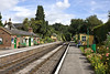 29th Aug 11:  There can be few more pleasant places to wait for a  train on a sunny afternoon than Medstead & Four Marks .  Trouble was when ever the train came the sun had just departed.