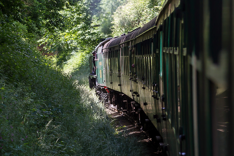 27th Jun 2015:  High Summer on the Watercress Line  as 850 'Lord Nelson' nears Arlesford