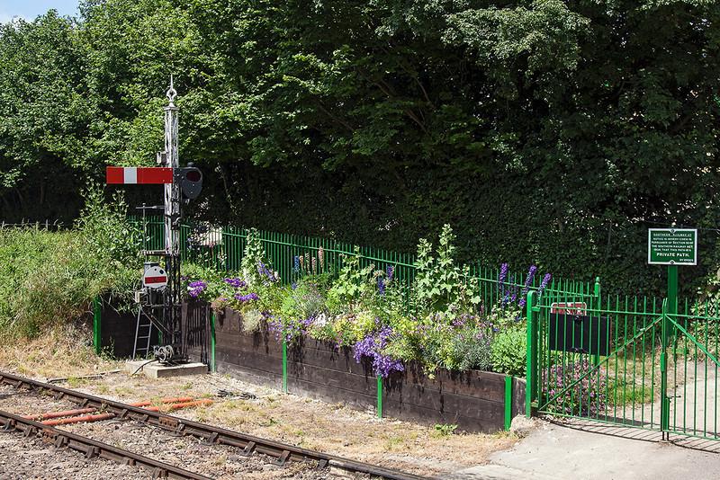 30th Jun 13:  A small garden at Ropley