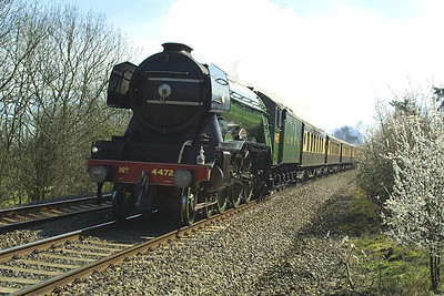 4472 'Flying Scotsman' speeds past Claydon whilst working VSOE's 1Z28 0827 London Victoria-Stratford upon Avon on 27/03/2002.