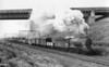 64900 near Godley April 1954 Gresley J39