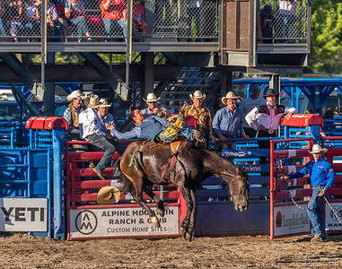 Did I mention that all his friends are looking on as the cowboy tries to stay on the bucking horse.  Talk about peer pressure!!!!!
