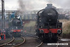 071111-015     Thomson B1 4-6-0's no's 1306 Mayflower and 61264 together, at the Barrow Hill gala. These are the only survivors from a class of 410 locomotives.