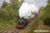 161008-031  Great Western Railway 4500 class 2-6-2T no 4566 passes Charnwood with the 10.45 Loughborough to Rothley Brook.