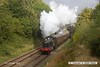161008-028  Great Western Railway 4500 class 2-6-2T no 4566 passes Charnwood with the 10.45 Loughborough to Rothley Brook.
