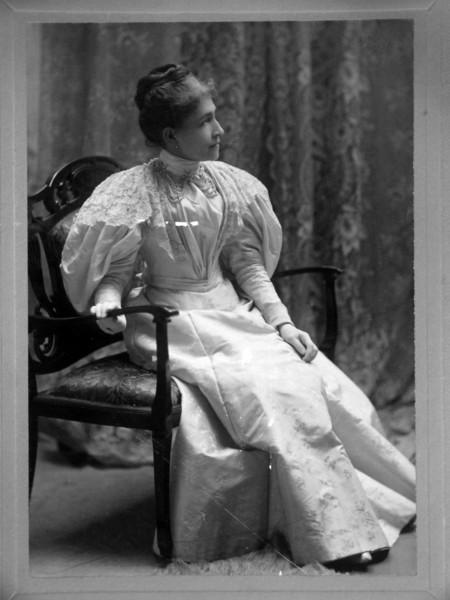 Eloise Bliss Stebbins died Adriam Mi 15 January 1902 first wife of Fred B Stebbins