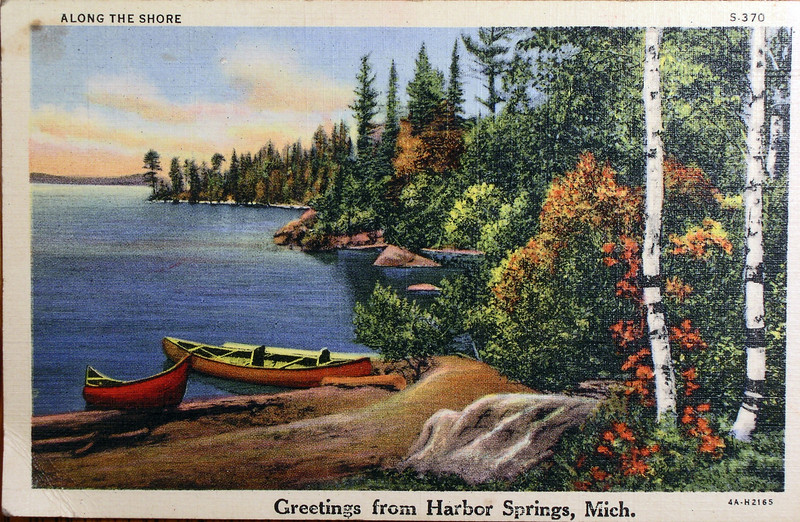 Along the Shroe - Greatings From Petoskey Michigan Postcard S-317