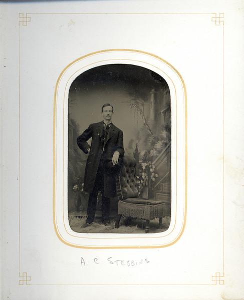 Arthur Cortland Stebbins