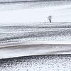 Bergsvingen, Øvre Eiker 12.3.2017<br /> Canon 7D Mark II + Tamron 150 - 600 mm 5,0 - 6,3 G2 @ 300 mm