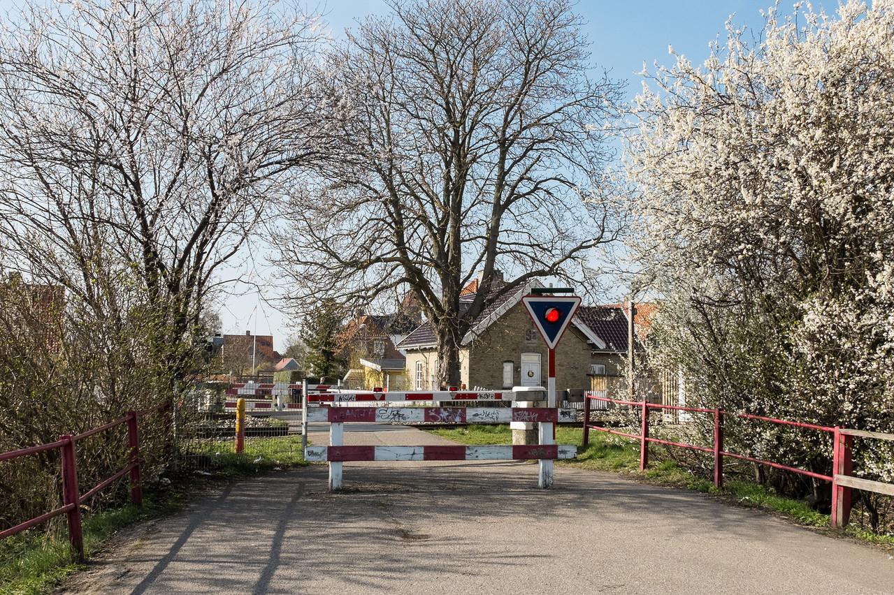 Forår i Køge