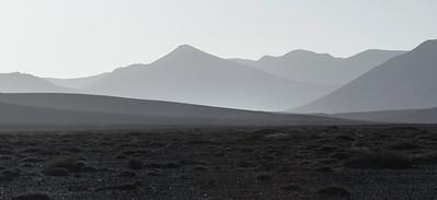 Halvørken, Fuerteventura / Semi-Desert<br /> 29.12.2012<br /> Canon EOS 7D + EF 100-400 mm 4,5-5,6 L